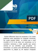 presentacion proyecto final de atención pre hospitalaria _PrimerosAuxilios