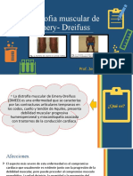 Distrofia Muscular de Emery- Dreifuss