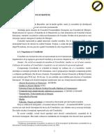 Partea 2 CONSILIUL UE si CONSILIUL European.pdf