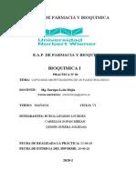 INFORME 1 BIOQUMICA 1 (1)