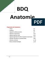 BDQ  Anatomie