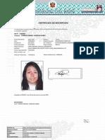 docC_386025.pdf