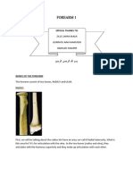 ANAT:Lecture Note Forearm1