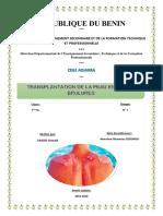exposé SAGBO Oswald Transplantation de la peau