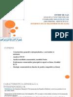 207921588 Moldtelecom Analiza Concurentilor MOLDTELECOM Ppt