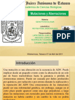 presentacin5-110407172340-phpapp01