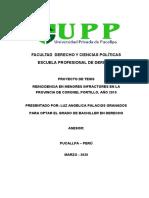 TESINA DERECHO - UPP