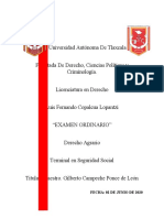 EXAMEN ORDINARIO - DERECHO AGRARIO - LUIS FERNANDO COPALCUA LOPANTZI
