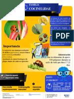 INFOGRAFIA DE MANEJO INTEGRADO DE PLAGAS.pptx