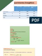 Cálculo de Requerimientos Energéticos-NUTRICION-lezama jahaira.pptx