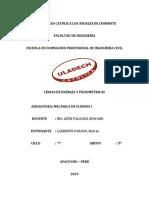 229918361-Lineas-Piezometricas-y-Lineas-de-Energia-1-1.docx