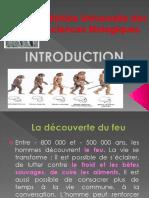 Cours 1 Introduction et préhistoire partie 2
