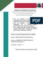 2.4.1._2.4.2._2.5.1._Paola_Yulissa_Maldonado_Torres