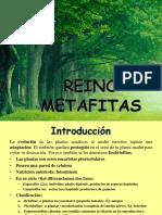 metafitas2020.pdf