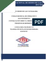 TDR ELABORACION DE PLANOS DE RED PRIMARIA EXISTENTE