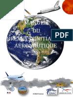 Manuel du brevet d'initiation aéronautique.pdf
