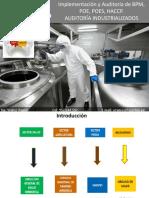 1 BPM POE HACCP AI 53p Ed01 - WR - PRESENTACION.pdf