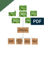 Arbol de Problemas Proyecto Individual.docx