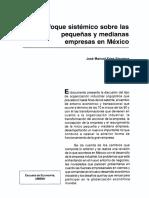 Dialnet-EnfoqueSistemicoSobreLasPequenasYMedianasEmpresasE-5900539.pdf