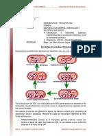 01. Reproduccion_crecimiento_y_metabolismo_bacteriano_lectura