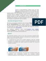 APUNTES UNIVERSIDAD POLITECNICA DE MADRID