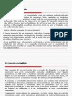 pavim.pdf