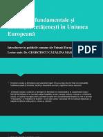 Drepturile fundamentale și libertățile cetățenești în Uniunea Europeană