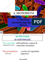 Il-microbiota.pdf