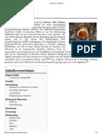 Ayahuasca – Wikipd.pdf