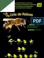 Cria de Reinas.pdf