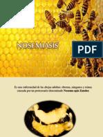 Nosemiasis