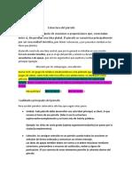 Estructura del párrafo. grado8