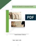 Guia de estudio primer parcial anatomia dental