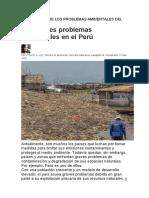 IMPORTANCIA DE PROBLEMA AMBIENTAL DEL MUNDO