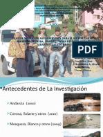 TESIS DE  GRADO  PARA  LICENCIATURAS  EN GESTION AMBIENTAL.(PEG)