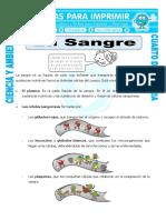 Ficha-La-sangre-para-Cuarto-de-Primaria.doc