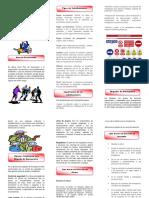 FOLLETO-SG Y SST.pdf