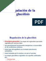 03 Regulación de la glucólisis.pptx