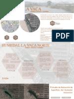 HUMEDAL - BENITES + GALLO