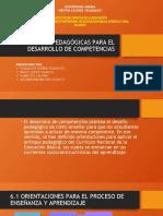 ORIENTACIONES PEDAGÓGICAS PARA EL DESARROLLO DE COMPETENCIAS.pptx