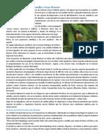 Aves migratorias....docx