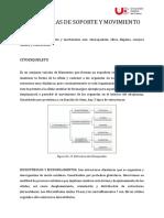 Pao. Tercera Semana de Clases.pdf