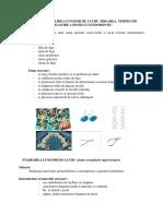 Izolarea irigarea determinarea lungimii de lucru si tehnici de modelare a spatiului endodontic