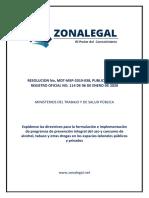 resolucion mdtmsp2019038 expidense las directrices para la formulacin e implementacon de program