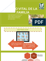 CICLO-VITAL-FAMILIAR-FINAL (1).pptx