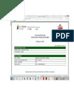 Disfunción ejecutiva y praxis marcial - Victor José Ávila Bolívar.pdf