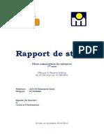 Rapport_de_stage_marjane_holding.docx