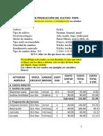 EJEMPLO DE COSTOS DE PRODUCCION