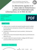 Saminario bioquimica pck