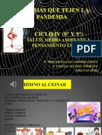 CICLO IV MEDIO AMBIENTE